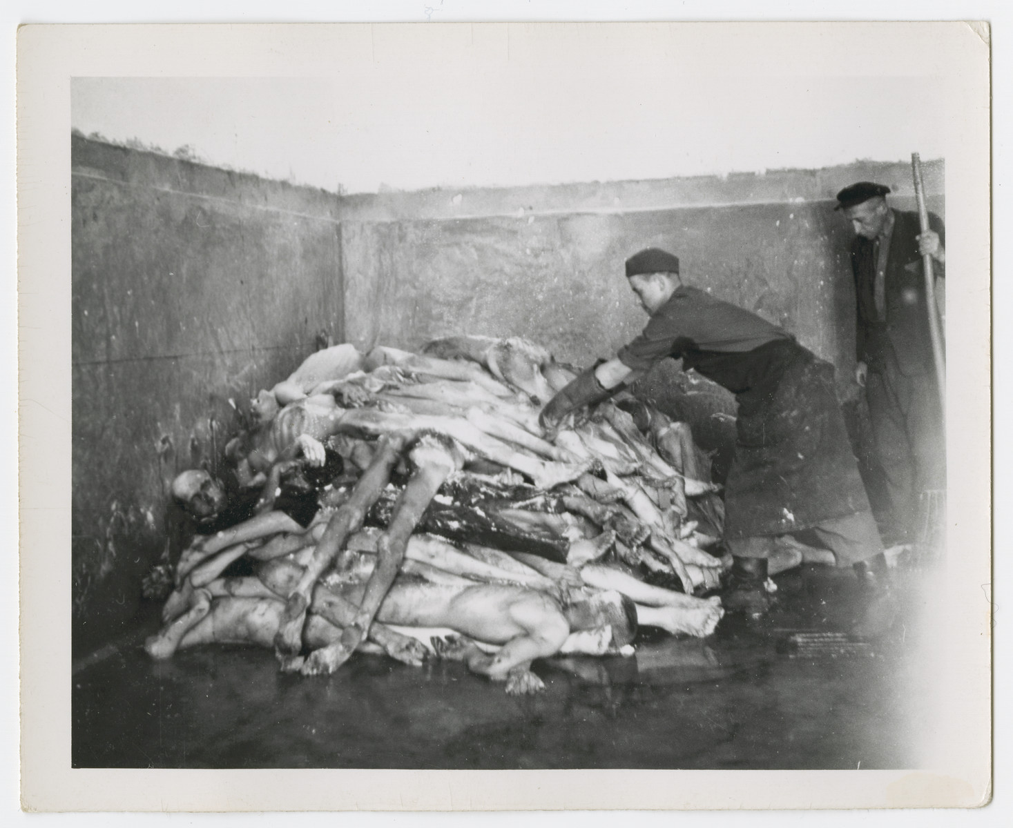 Survivors stack up bodies in the Dachau concentration camp after liberation.