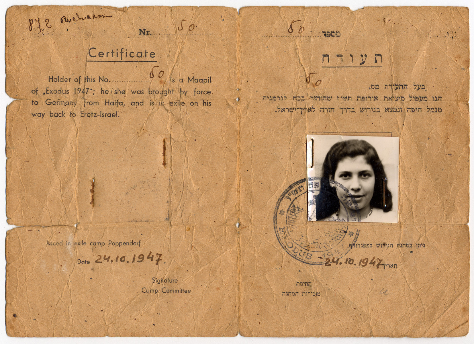 Identity card issued to former Exodus passenger Irene Burenstein in the Poppendorf DP camp.