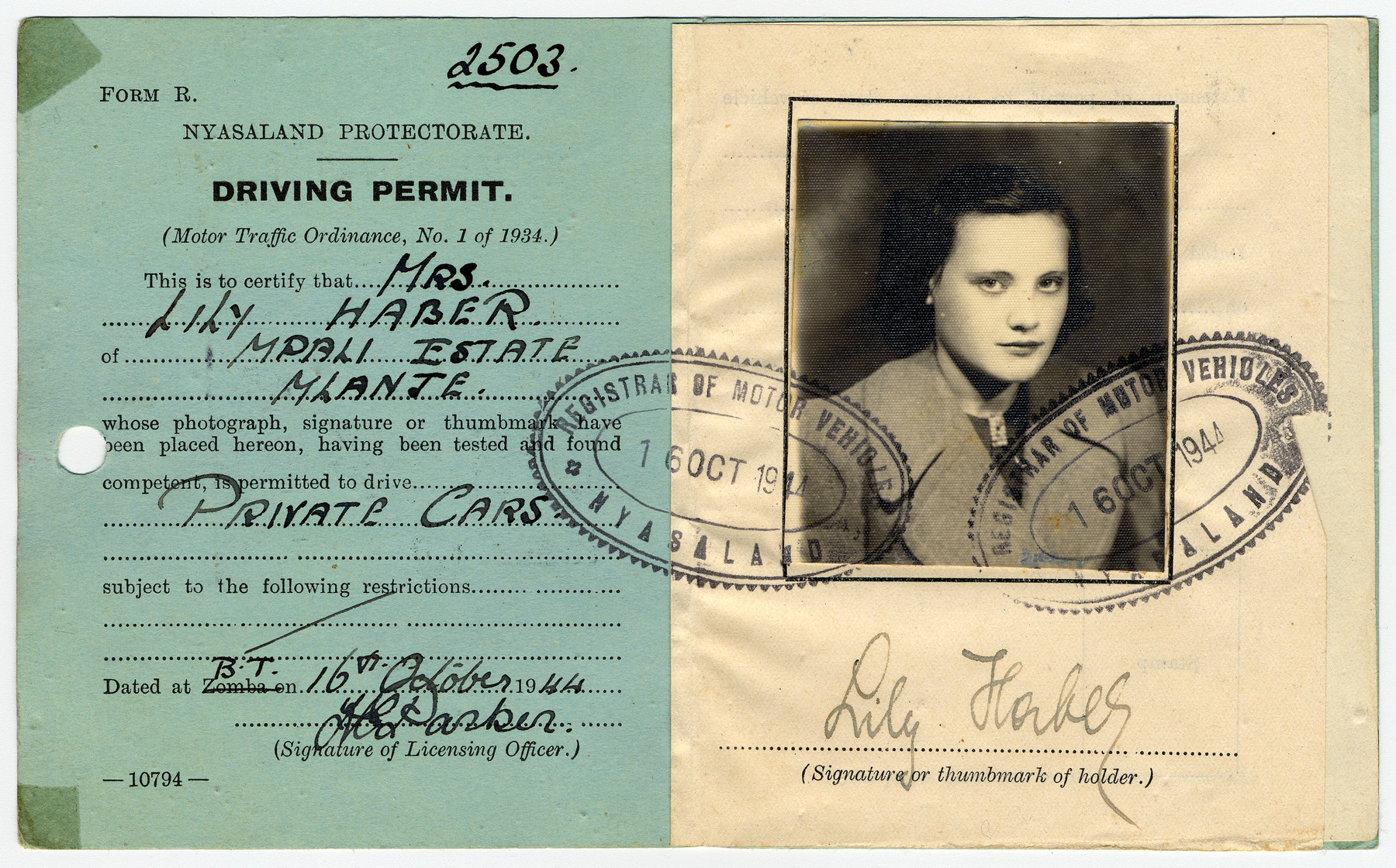 Driver's license issued to Lily Haber, a Jewish refugee, who was sent to Nyasaland as a British enemy alien.