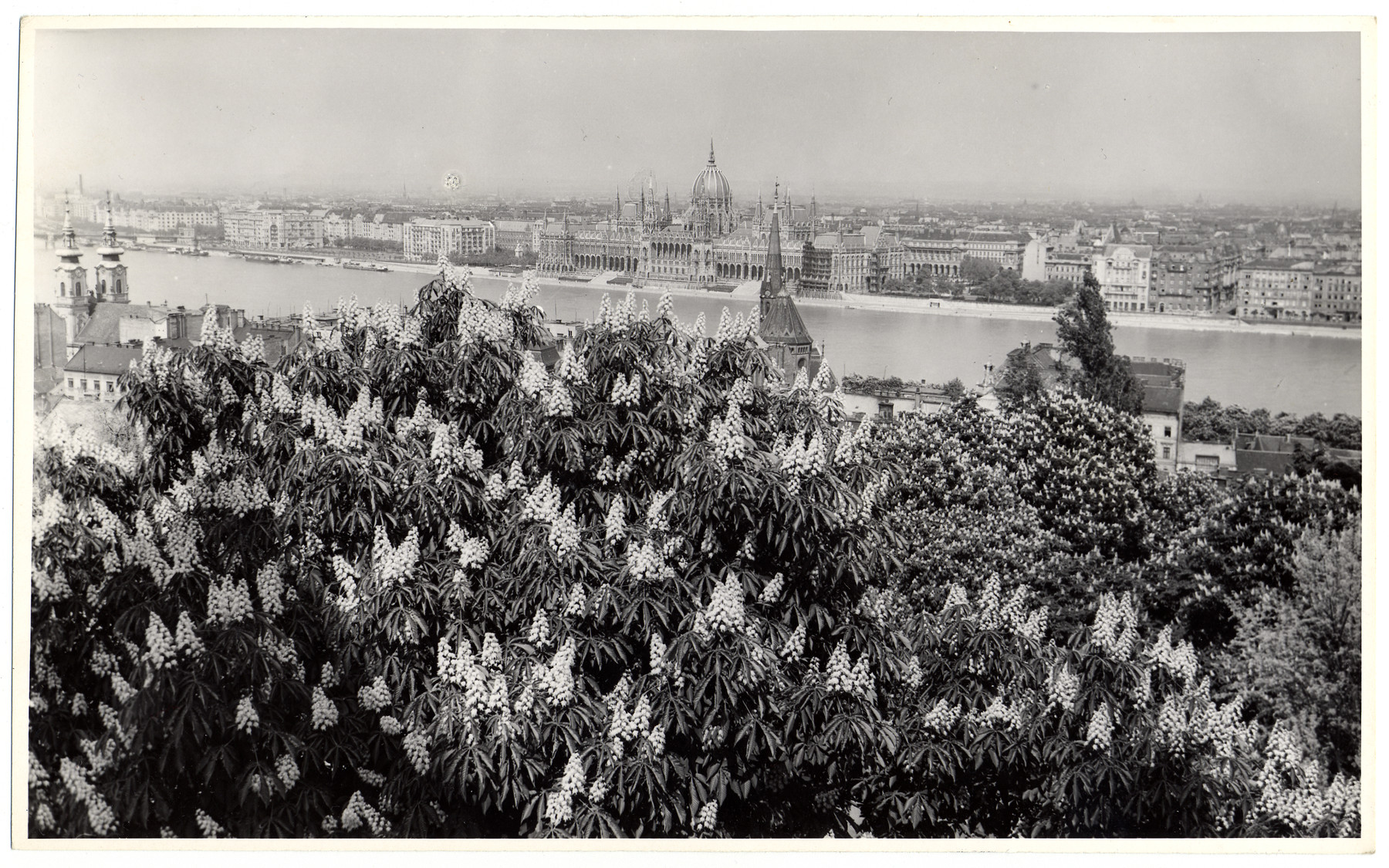 View of wartime Budapest prior ot the American bombing.