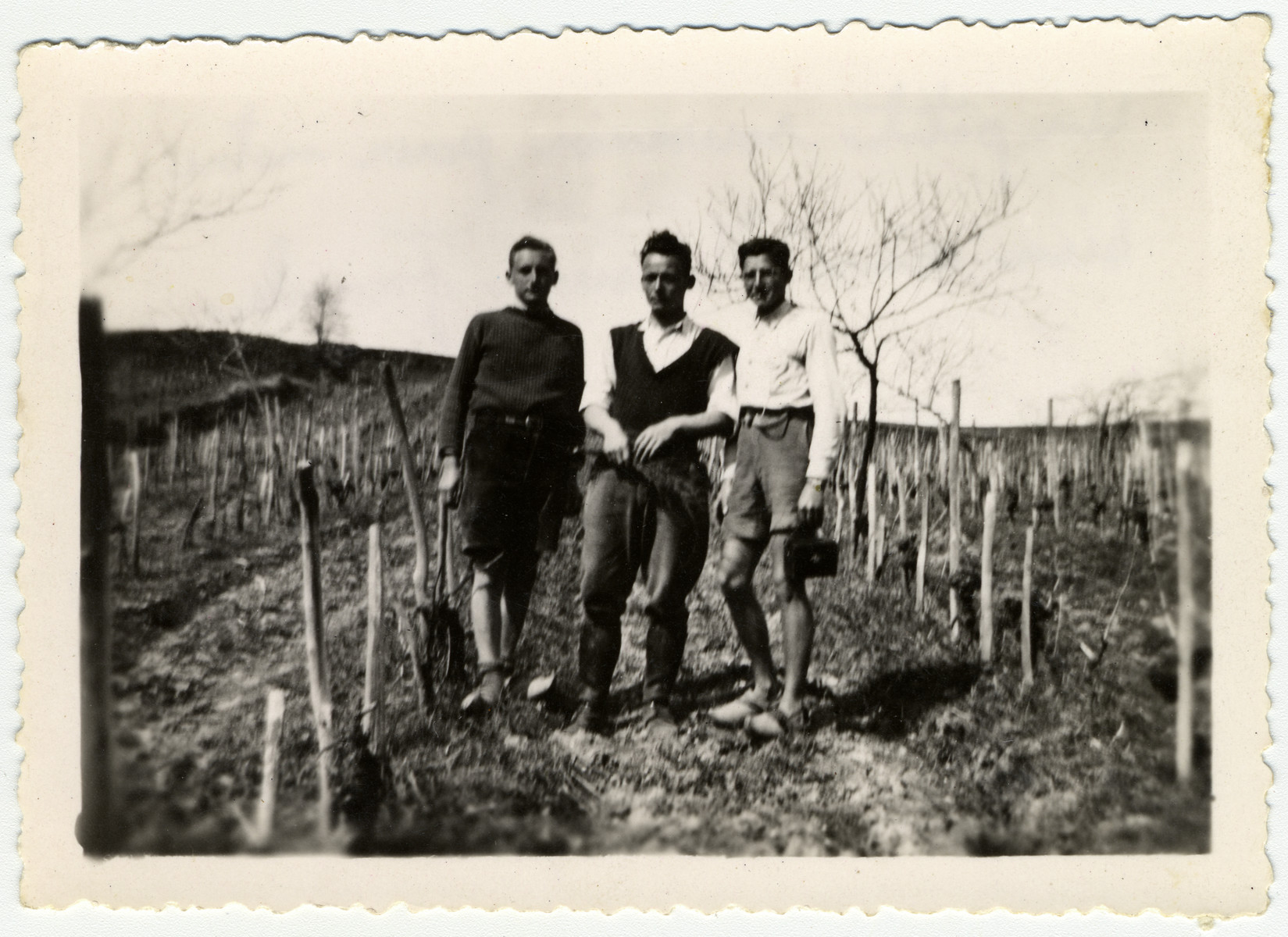 Three young men stand in the garden of the children's home Chateau de La Hille.   Pictured are Leo Lewin, Alex Frank, who had been colony director from 1940 to 1941, and Kurt Moser. Lewin escaped illegally to Switzerland in 1943. Frank hiked to safety across the Pyrenees in 1943 and Moser was caught and deported to Auschwitz where he died from typhus in 1943.