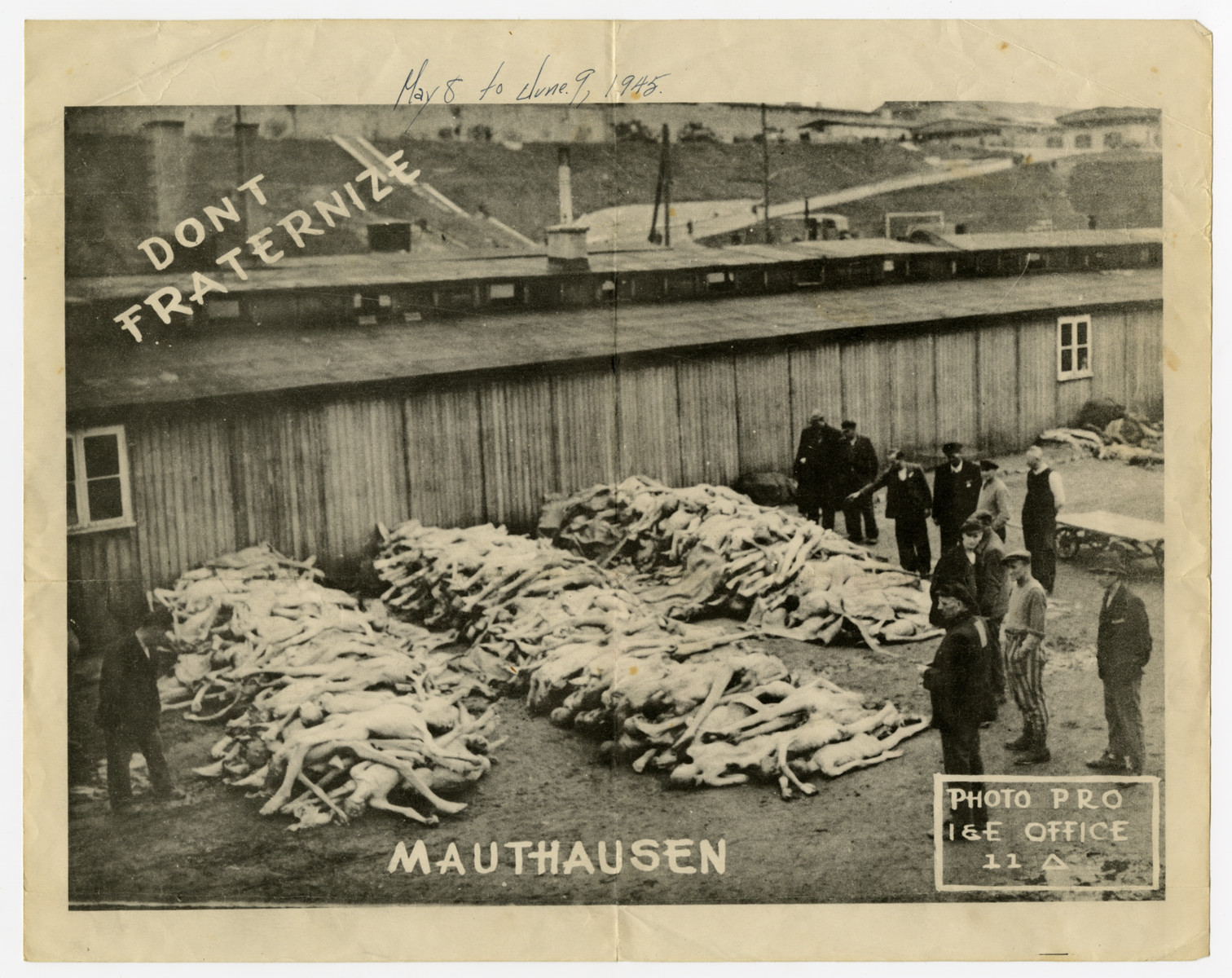 Handbill issued by the U.S. Army which uses an image of concentration camp victims at Mauthausen to remind soldiers not to fraternize with German civilians.