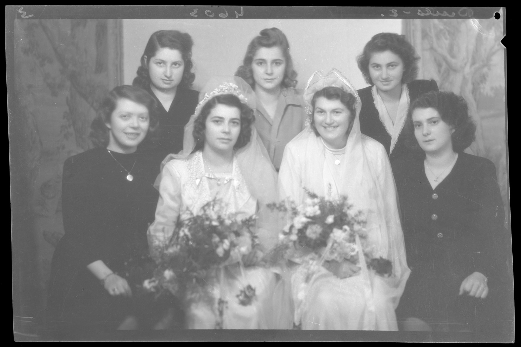 Group portraits of the bride of Herman Fischer, another bride and their female guests.