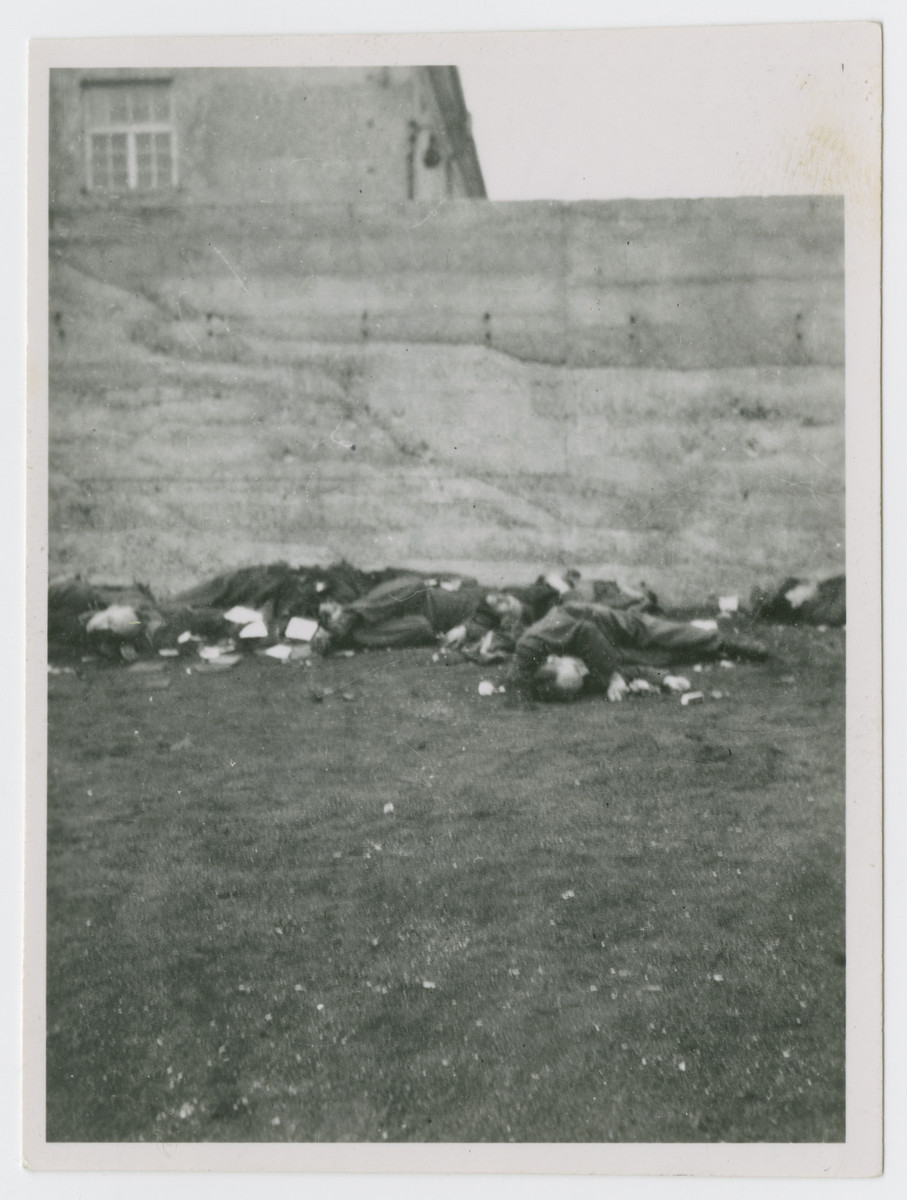 "Bodies of SS men lie on the ground of the camp after American soldiers shot them.  The original caption reads"" SS men we lined up and shot with our machine guns."""
