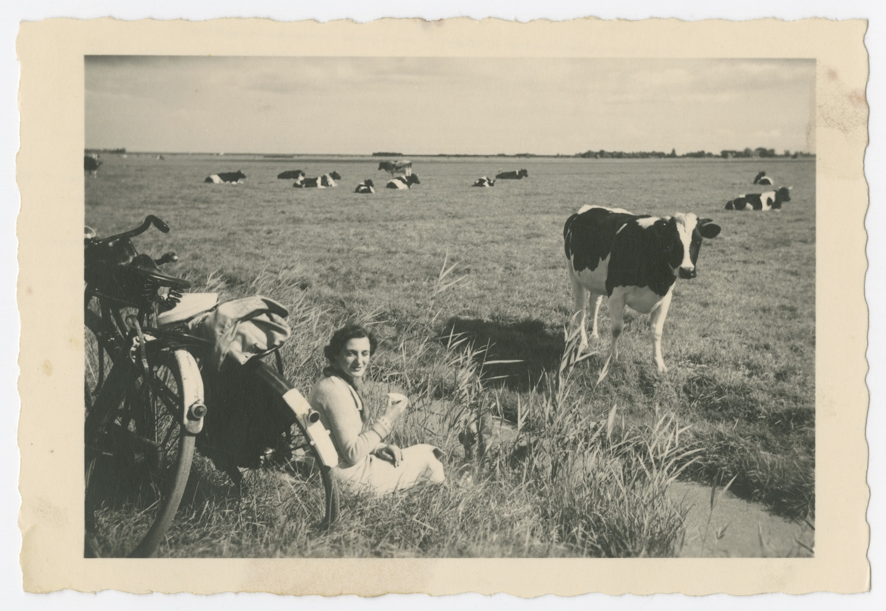 Engelien rests near a field of cattle while on a bike trip.