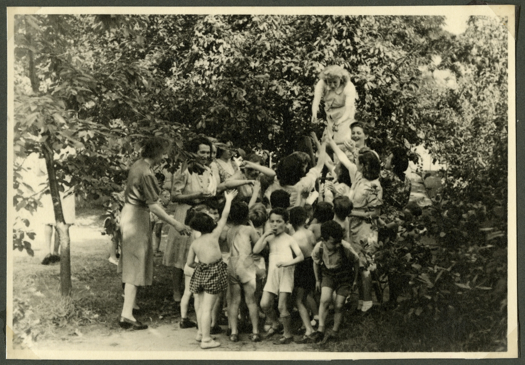 Jewish children from the Nos Petits children's home visit a fruit orchard.