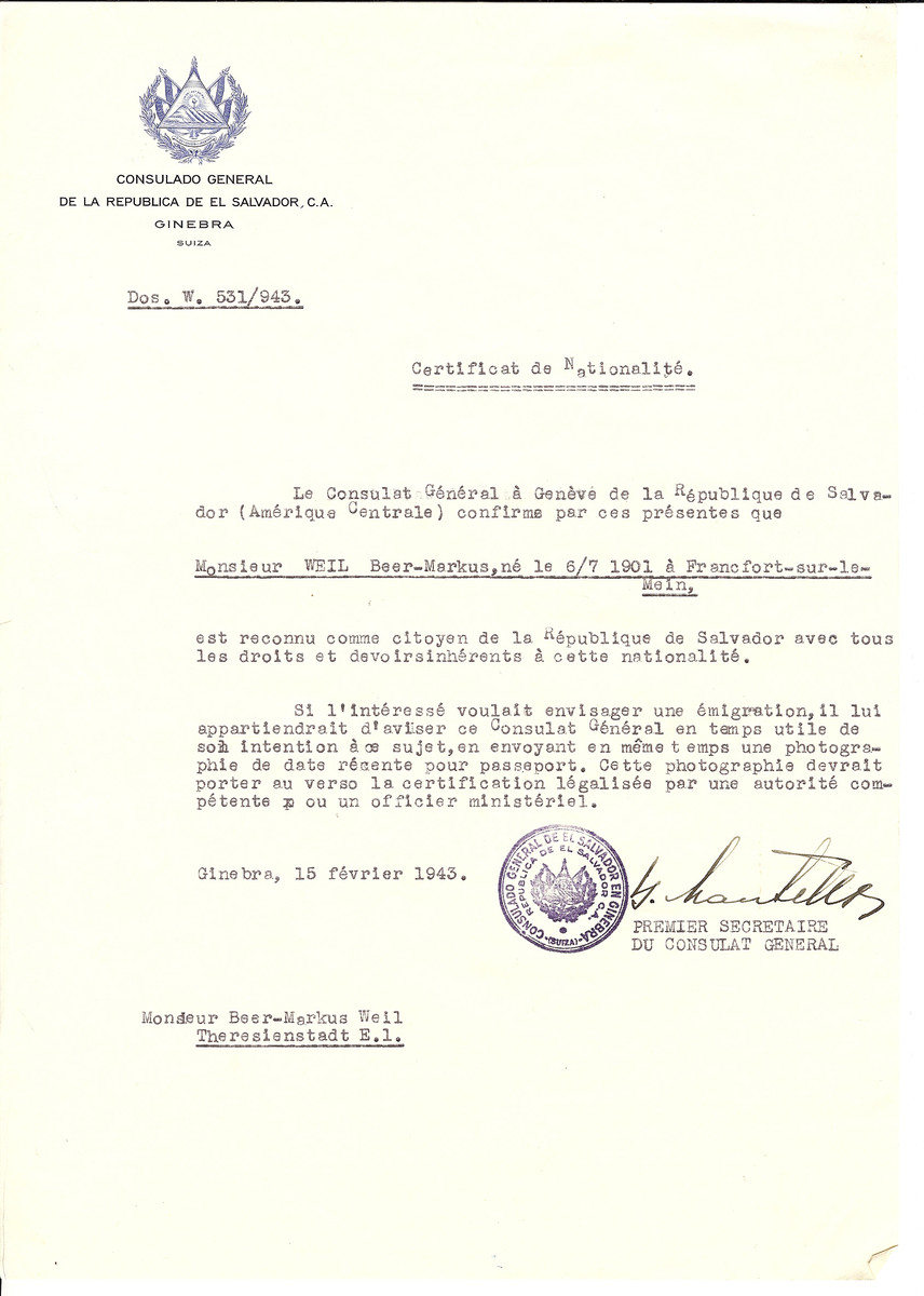 Unauthorized Salvadoran citizenship certificate issued to Beer-Marcus Weil (b. July 7 1901, Frankfurt,Germany) by George Mandel-Mantello, First Secretary of the Salvadoran Consulate in Switzerland.   The document was mailed to the Theresienstadt concentration camp.