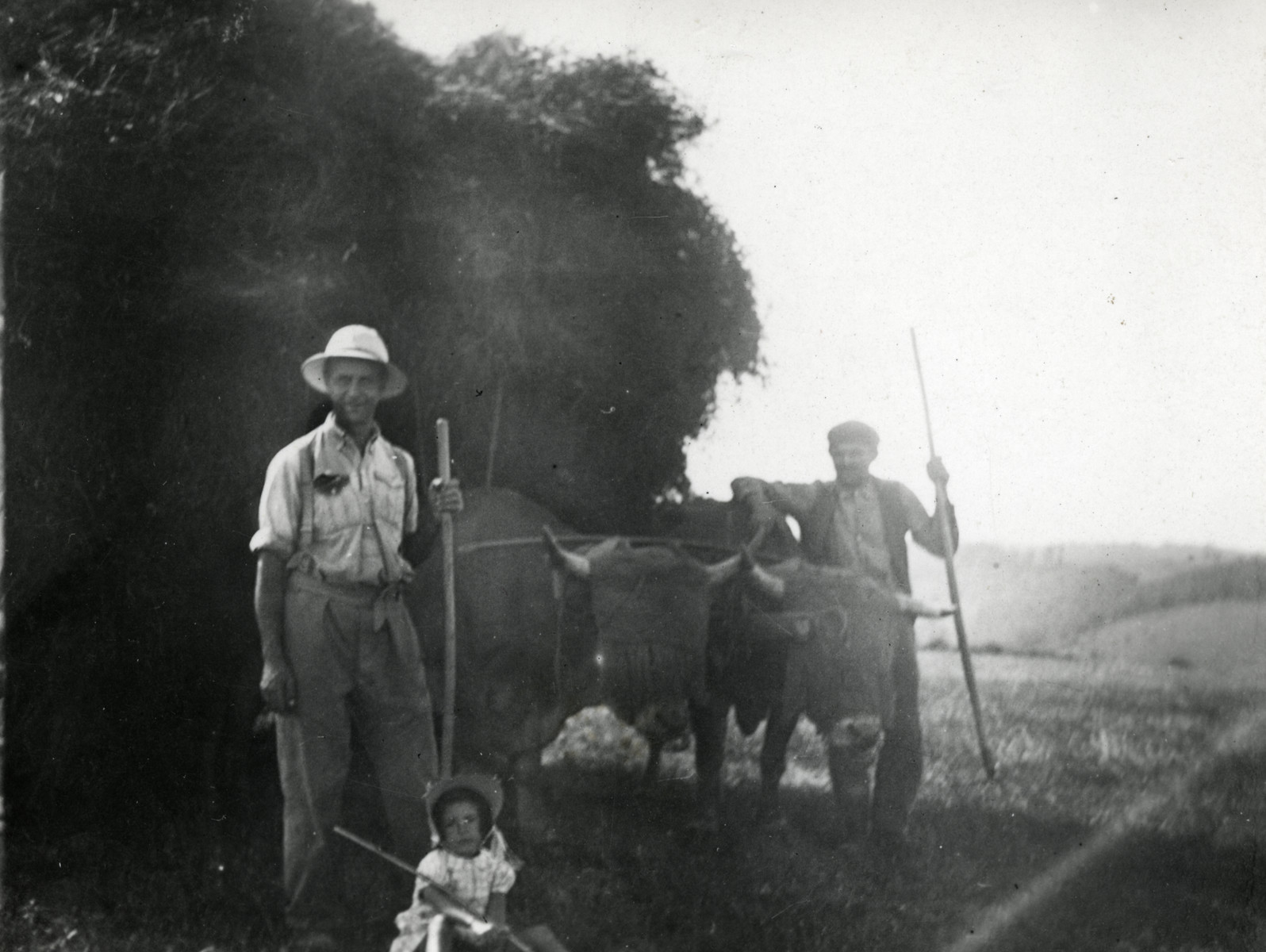 Beatrice Heffer, the donor, is sitting in front of two oxen pulling a carriage full of hay. Her father, Alfred Kahn, is standing behind her. His employer, Mr. Combes, is leaning on one of the oxen.