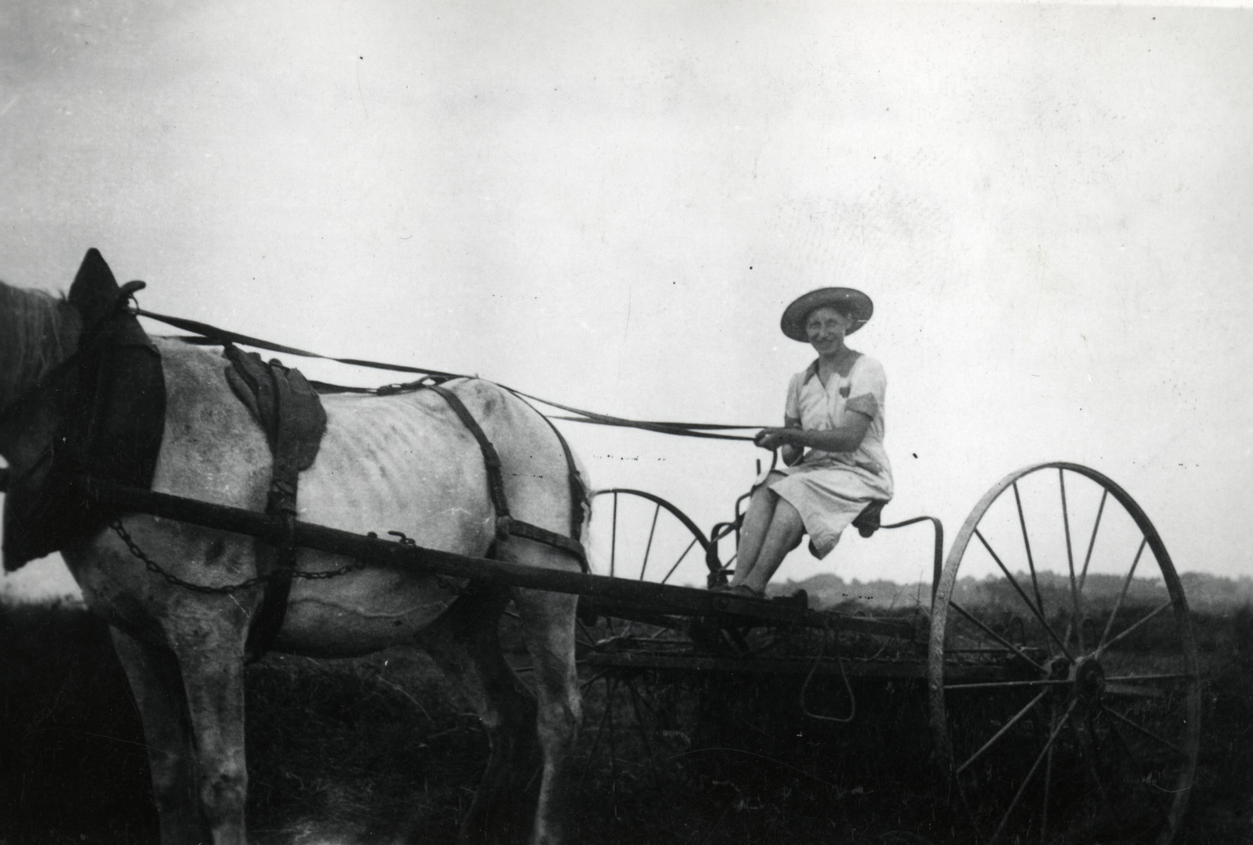 Rosa Moses, the donor's mother, is sitting in a horse-drawn carriage, holding the horse's reins. The farm is Mr. Combes', where Rosa's husband Alfred Kahn was working.