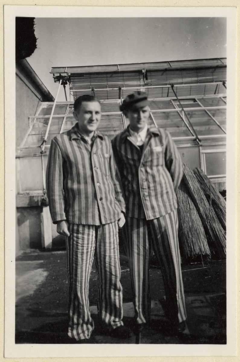 Two Czech political prisoners stand next to the greenhouse in the Dachau concentration camp.  Jiri Hell is standing on the left.   The photograph was taken by Karel Kasak and developed by Maria Seidenberger.