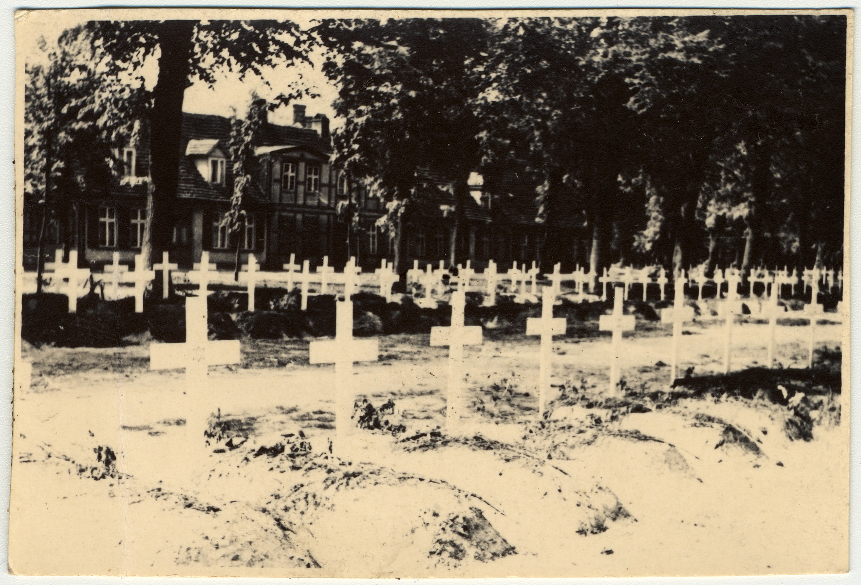 Graves dug by the people of Ludwigslust on the palace grounds of the Archduke of Mecklenburg.  German civilians were forced by U.S. troops to bury the bodies of prisoners killed in the Woebbelin concentration camp.