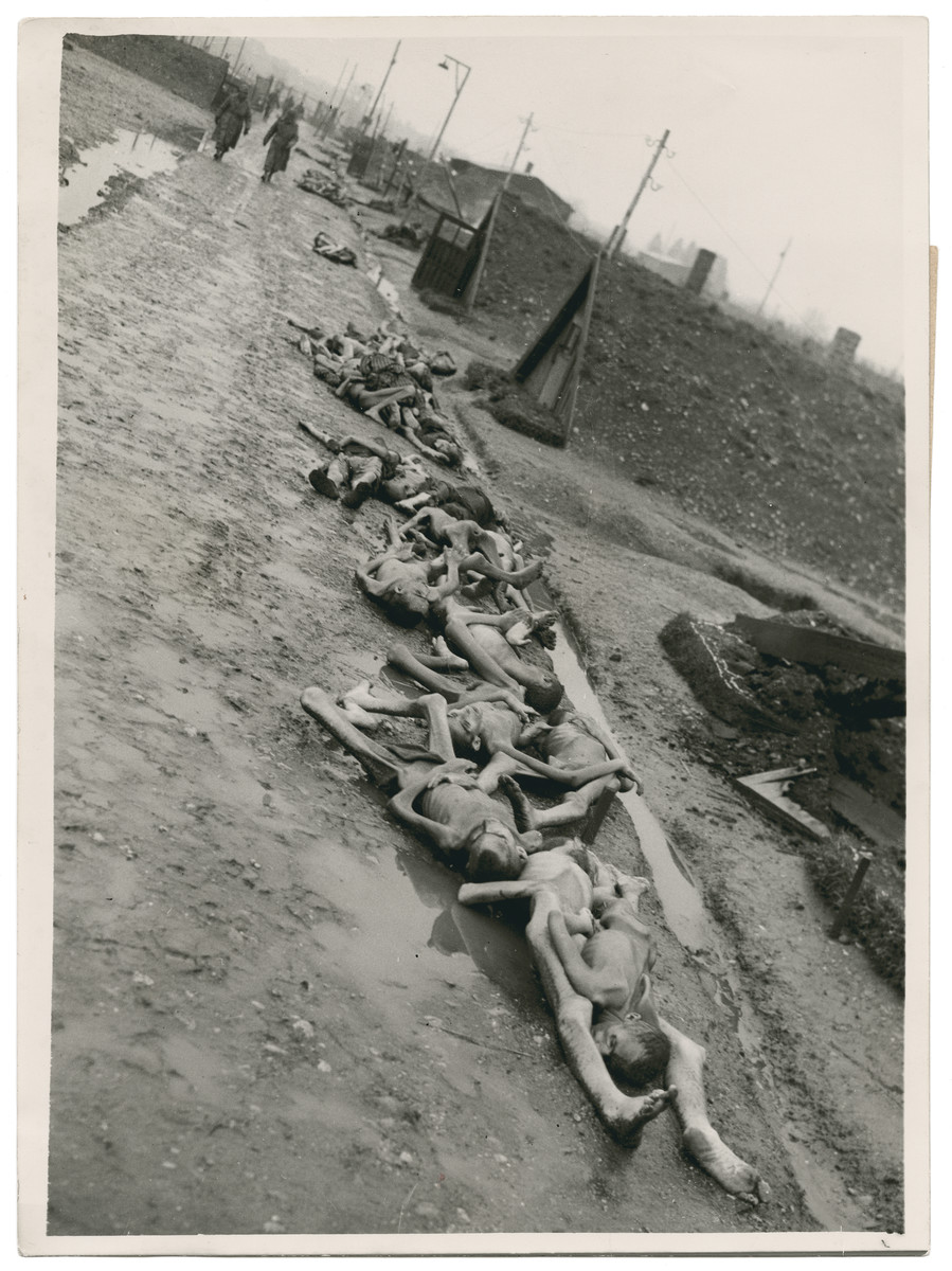 """Corpses lie outside the barrcks of the Hurlach sub-camp.  Original Caption Reads:  """"Naked, starved, and half-burned bodies line the gutter of a roadway through Schwabmunchen."""""""