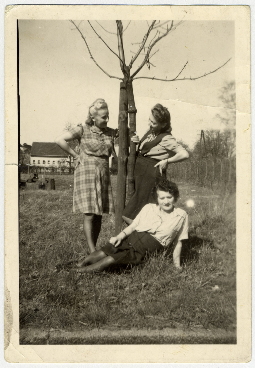 Three women pose next to a tree in the Bergen-Belsen displaced persons camp.  Esther Rosengarten is the woman lying on the grass
