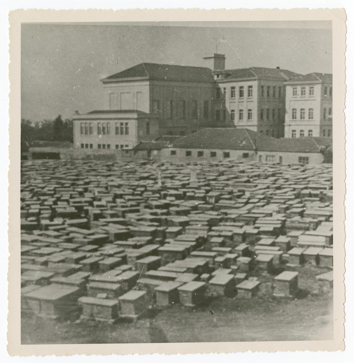 """View of the Jewish cemetery in Salonika.  The original caption reads """"Cemetery prewar.  500,000 graves in past 500 years."""""""