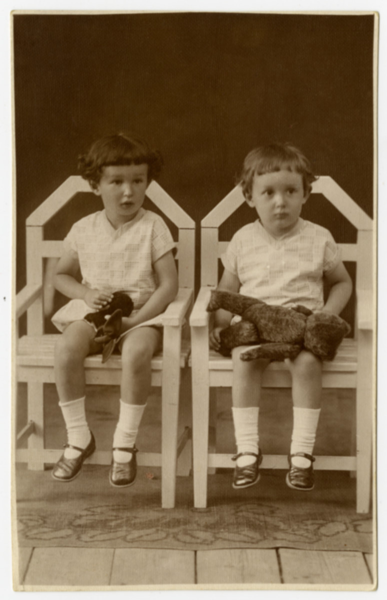 Studio portrait of Janos and Paul Vjecsner holding stuffed animals.