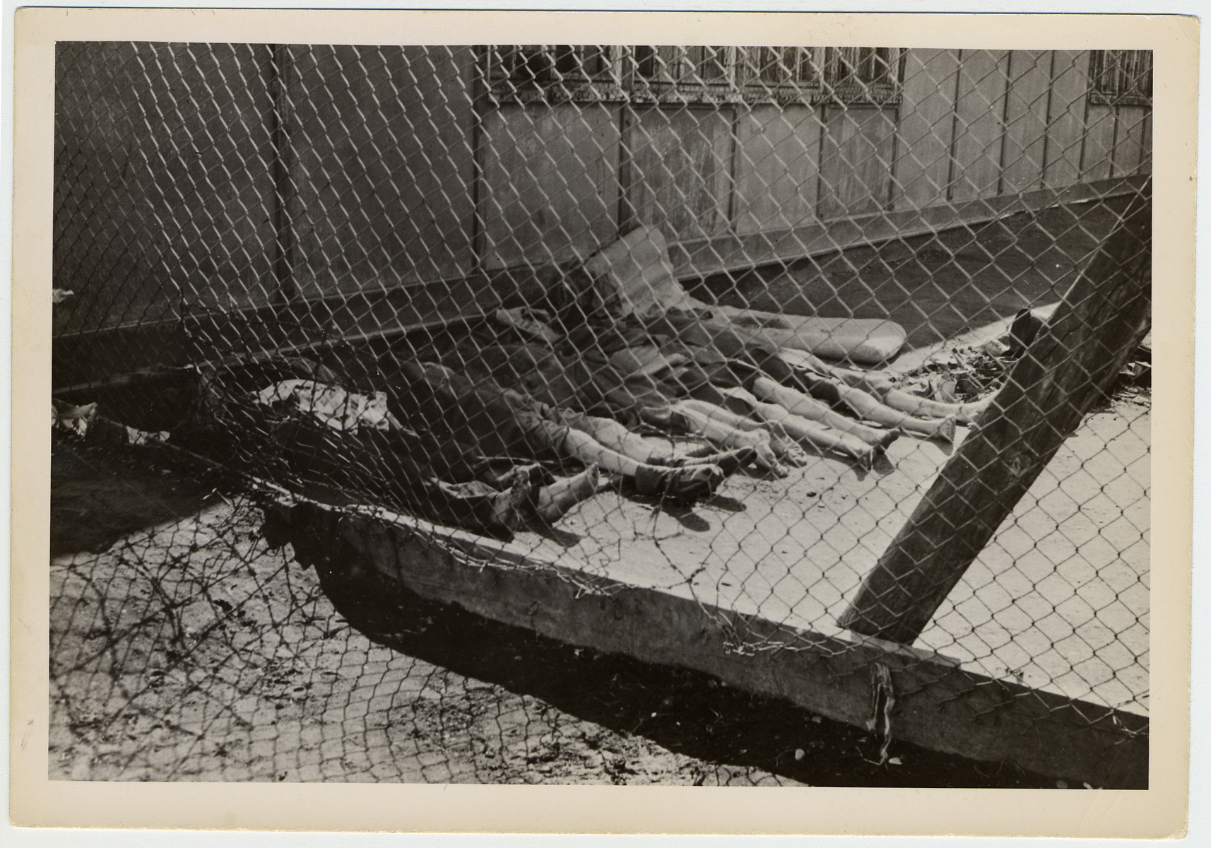 """Remains of deceased prisoners found in the barracks of the Dachau concentration camp after liberation.  Original caption reads, """"The dead of the Dachau concentration camp lie in the back of the prison barracks. Each barrack has their little pile of dead bodies. Inmates claim that 14,000 prisoners have died in the past few months."""""""