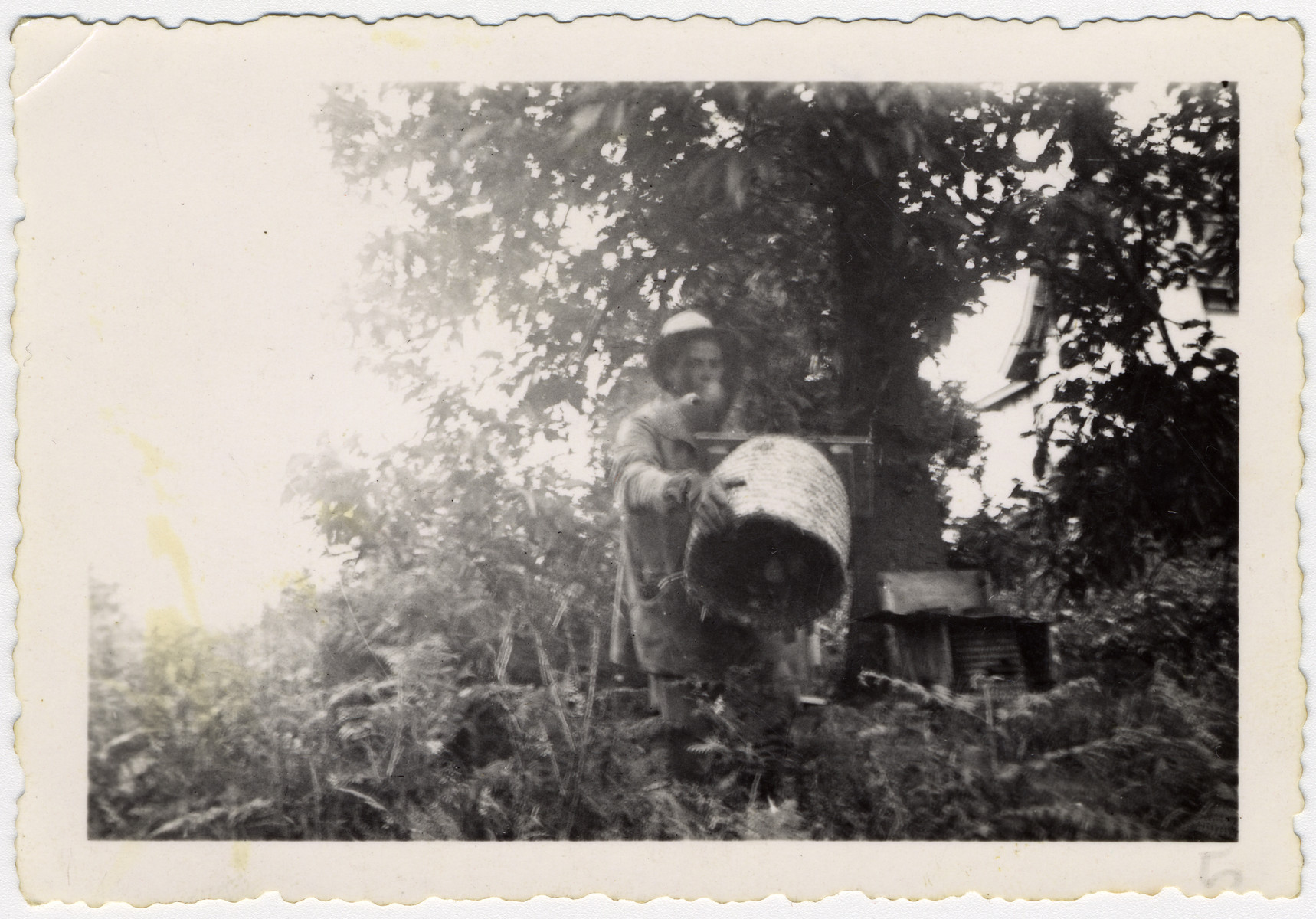 Izhak tends the beehives in the La Ramee agricultural school.  The school was established after Jewish students were expelled from general schools  and directed by Haroun Tazieff.