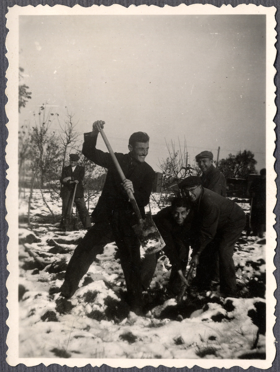 Jewish workers from the Lipa farm labor camp dig in the snow in Cervene Pecky where they were allowed to work for a week in the spring of 1942.  Mr. Stransky is on the right.