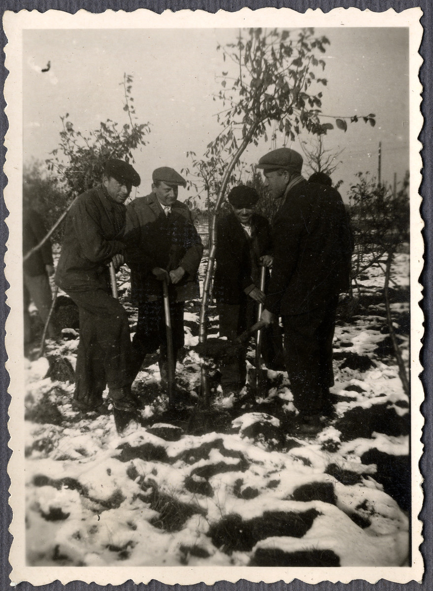 Four Jewish workers from the Lipa farm labor camp dig in the snow in Cervene Pecky where they were allowed to work for a week in the spring of 1942.