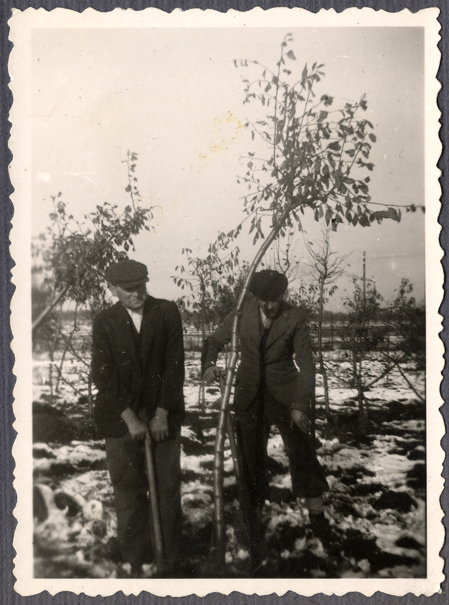 Two Jewish workers from the Lipa farm labor camp dig in the snow in Cervene Pecky where they were allowed to work for a week in the spring of 1942.