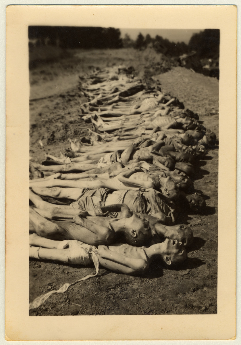 View of a row of corpses awaiting burial in the Mauthausen concentration camp following liberation.