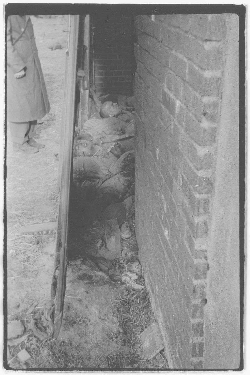 US Army officers from the 91st Evacuation Hospital Unit investigate the aftermath of the Gardelegen Atrocity.   Corpses are seen inside the barn door.