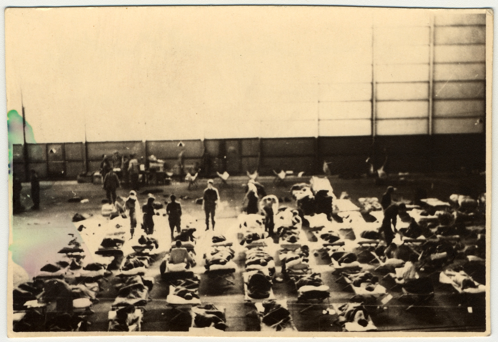 Survivors lay in cots in the interior of an airplane hanger that was used as an infirmary for concentration camp survivors.