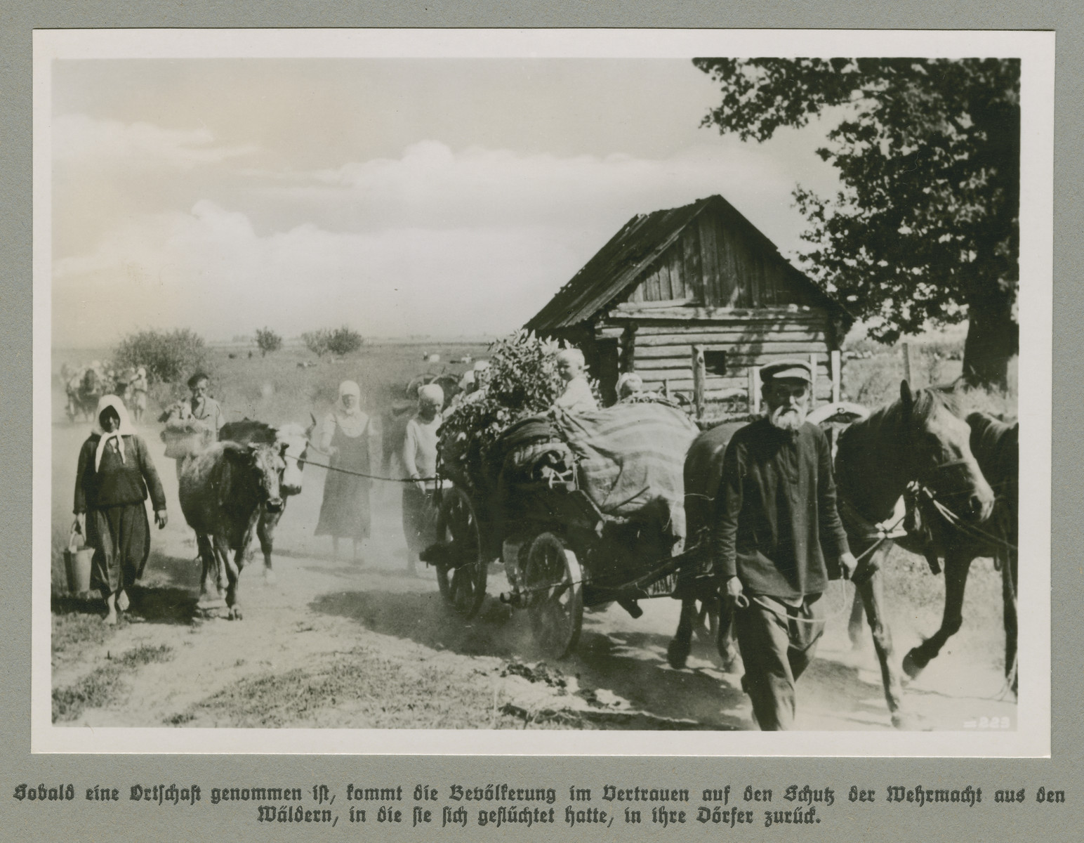 Peasants with wagons and livestock proceed down a dirt road.  The original caption reads: As soon as an area has been taken, the entire population returns to their villages from the forests to which they have fled, confident in the protection of the Wehrmacht.