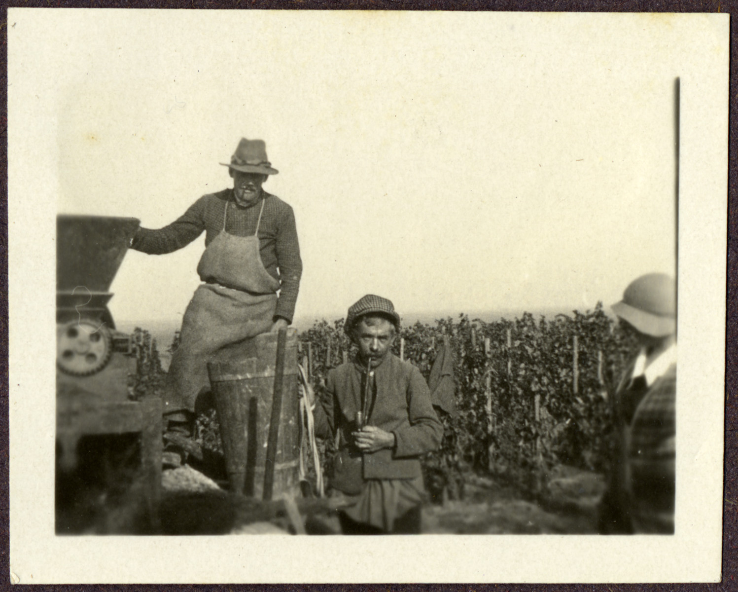 Farmhands work on Ludwig Engel's estate in Burgenland, Austria.