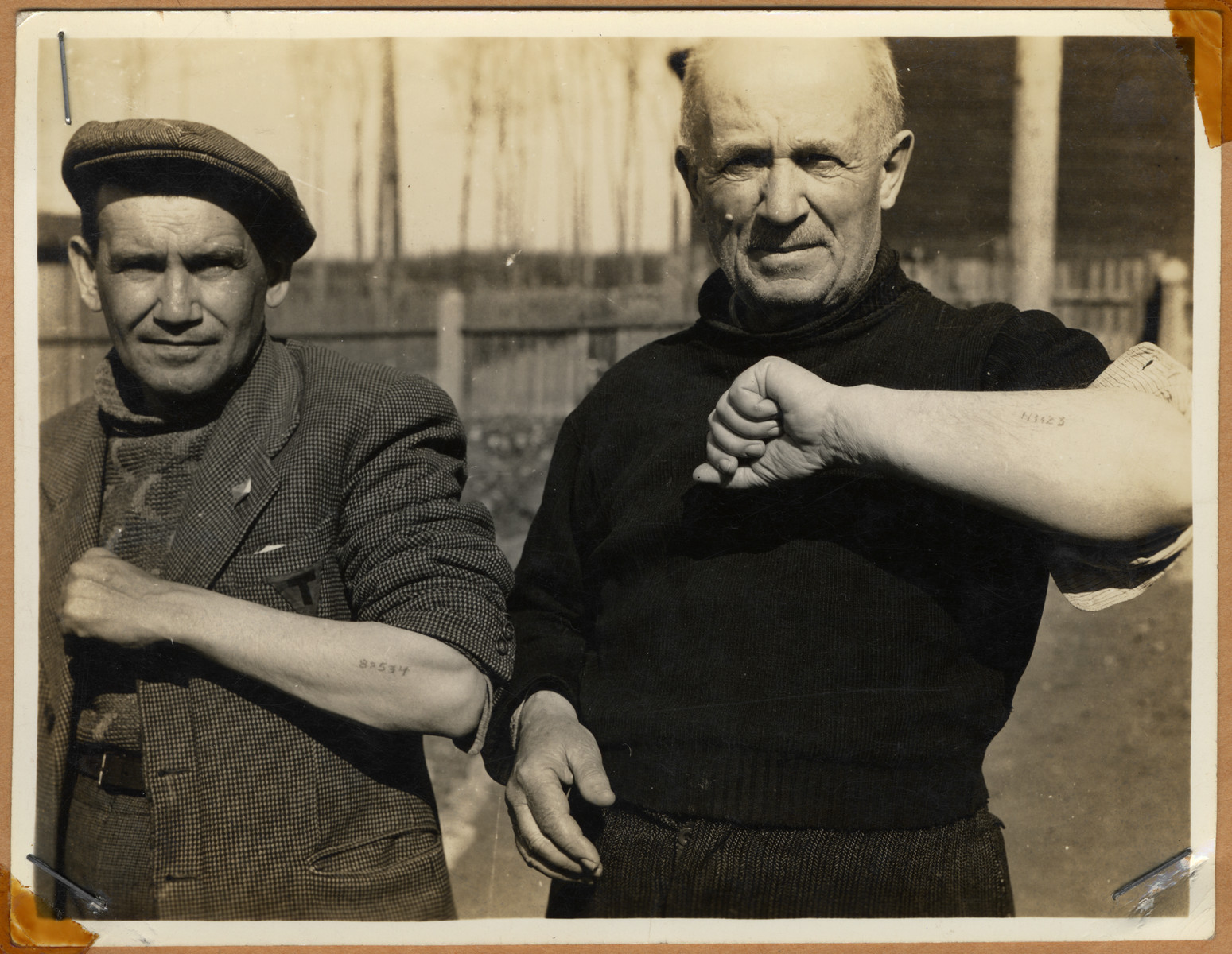 """Survivors showing their tattoos after the liberation of Buchenwald.  The lender's handwritten caption reads, """"Two men showing numbers branded on arms.  All clothing was also stamped where it was readily seen."""""""