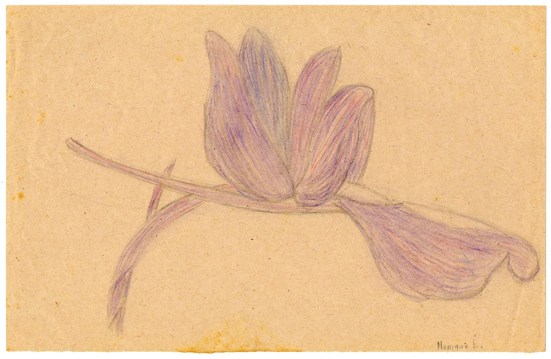 Color child's drawing of a purple flower in Chateau de la Hille.