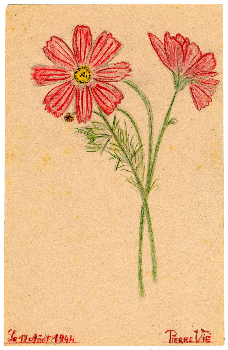 A child's drawing of a red flower in Chateau de la Hille.