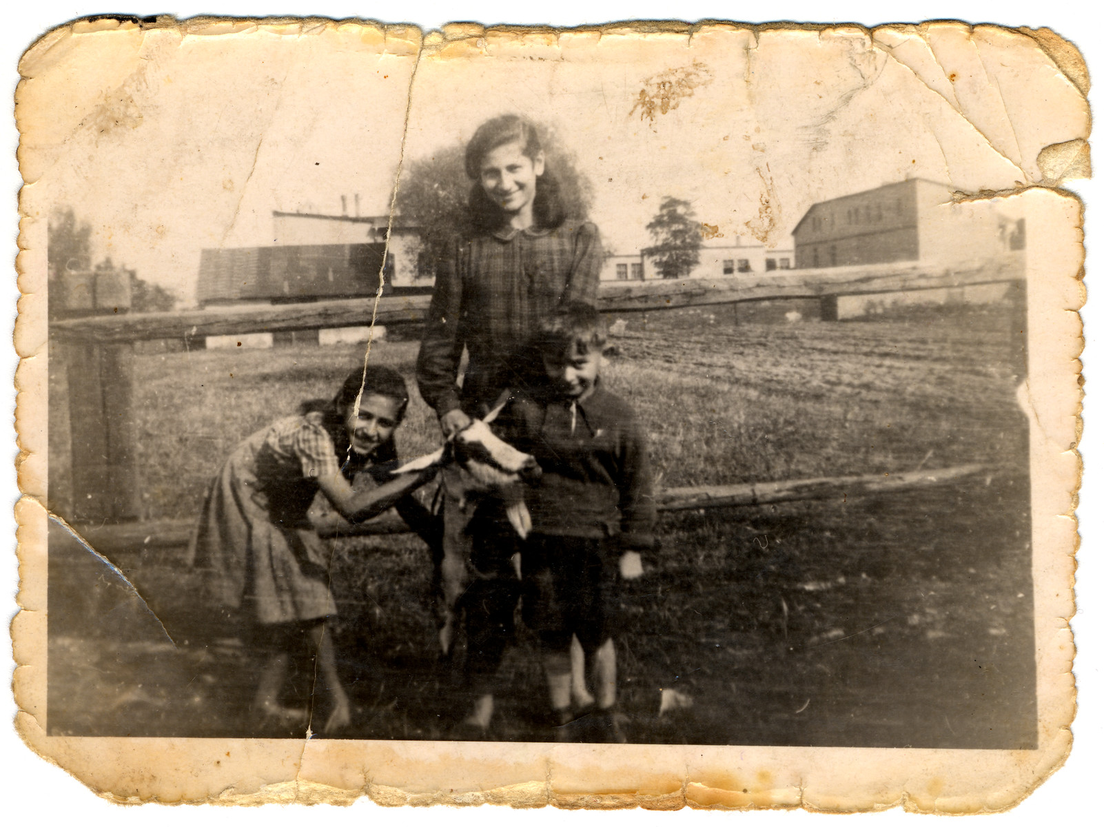 Three Jewish children pose next to a fence, holding a goat.  Pictured (left to right) are sisters Yentel, Sally, and Karol Slomnicki.  Sally carried this photo with her in her shoe throughout her time in forced labor camps.