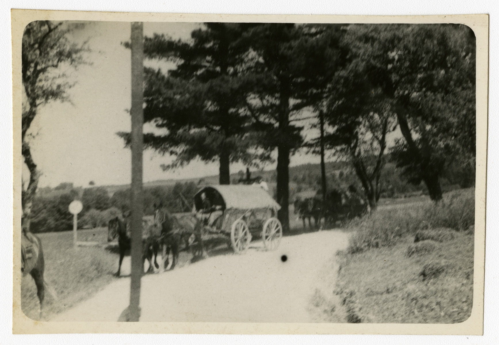 "German soldiers return home by horse-drawn carts.  Original caption reads, ""German soldiers going home."""