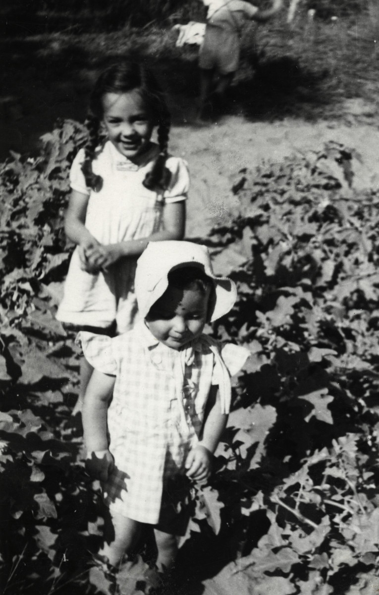 Noemi Cassuto and her little brother Ariel play outdoors in some bushes.