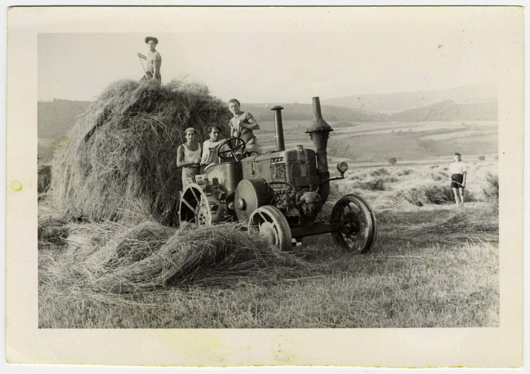 DPs use a tractor to move a huge stack of hay at a hachshara in the Eschwege displaced persons' camp.