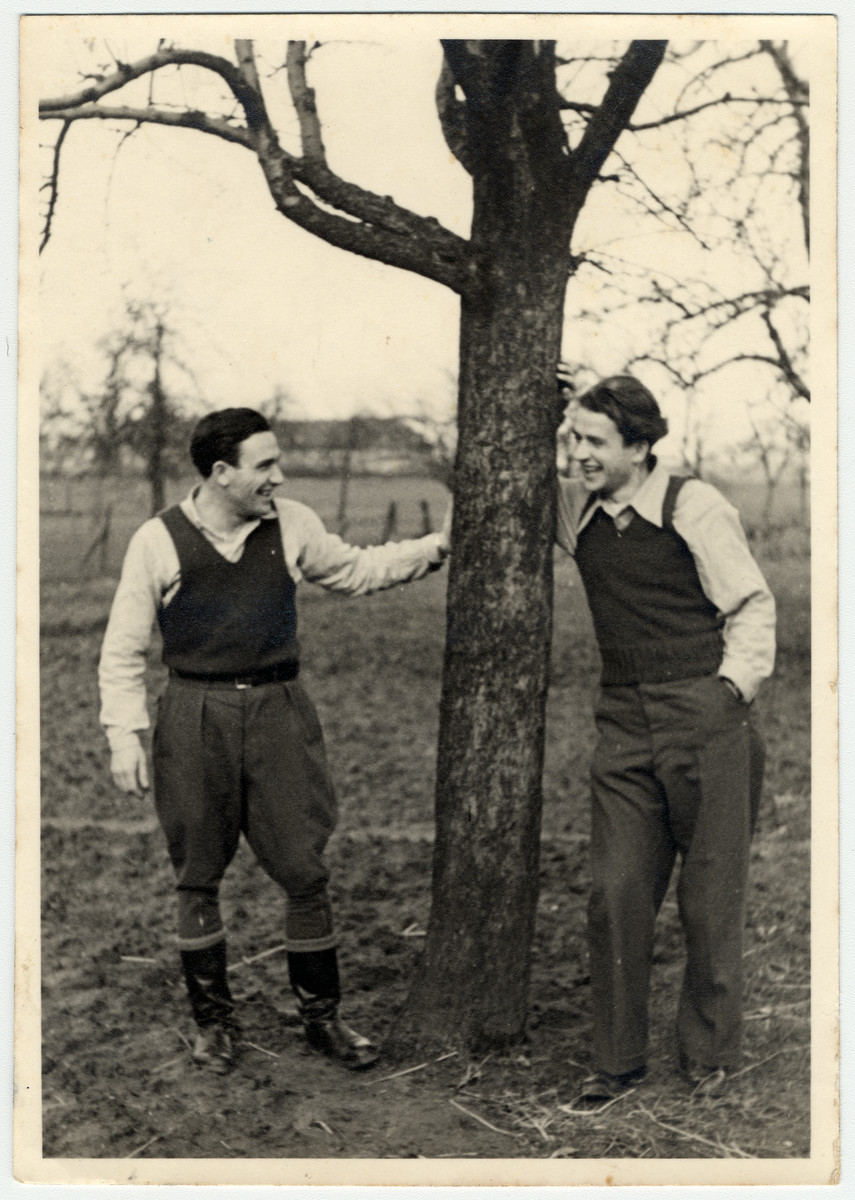 Two young men stand under a tree at the Eschwege displaced persons' camp.