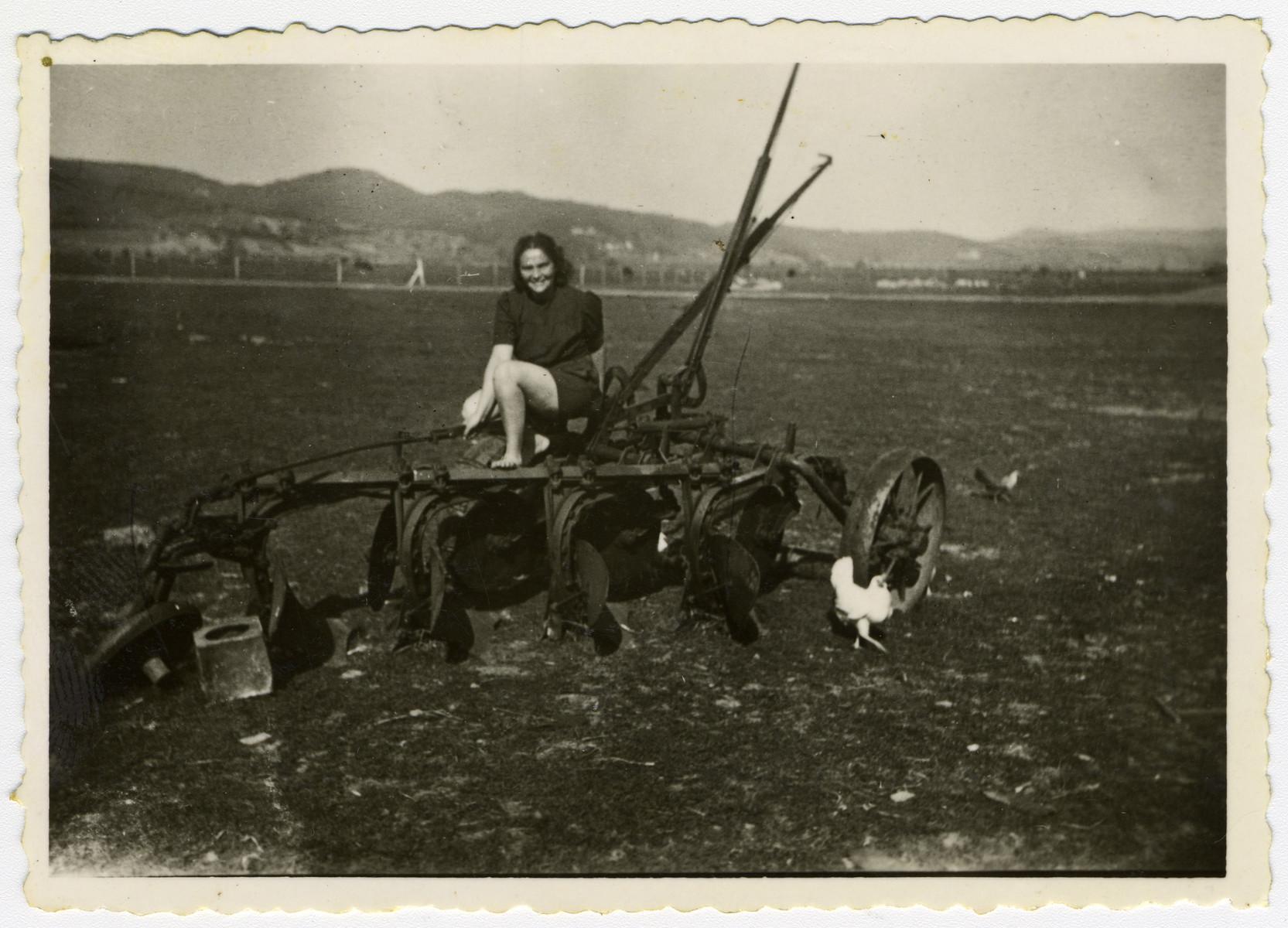 Ora Bogler plows the field at a kibbutz hachshara in Eschwege.