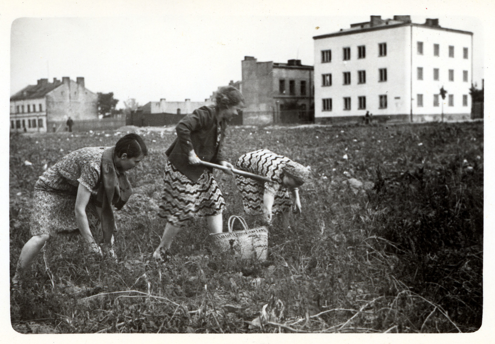 Polish women forage for potatoes in the besieged city of Warsaw.