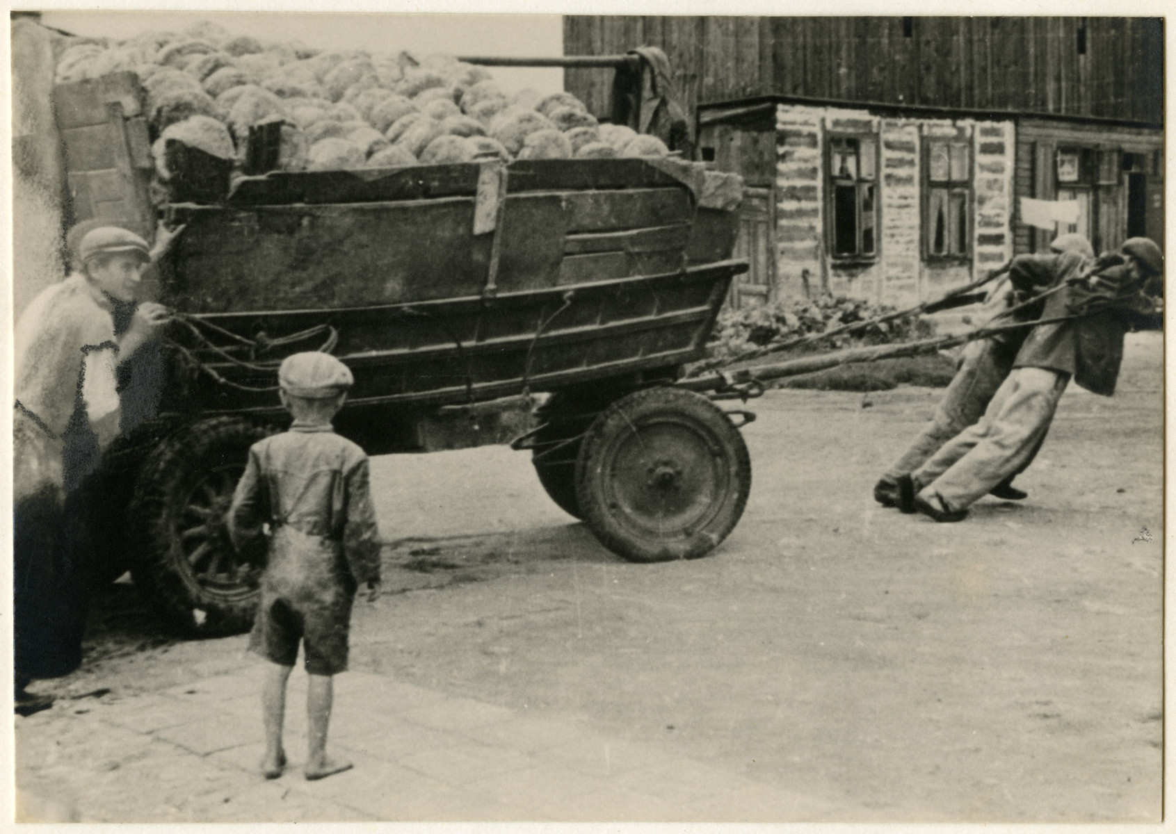 Jewish teenage boys push and pull a wagon loaded with bread to the distribution stores in the Lodz ghetto.