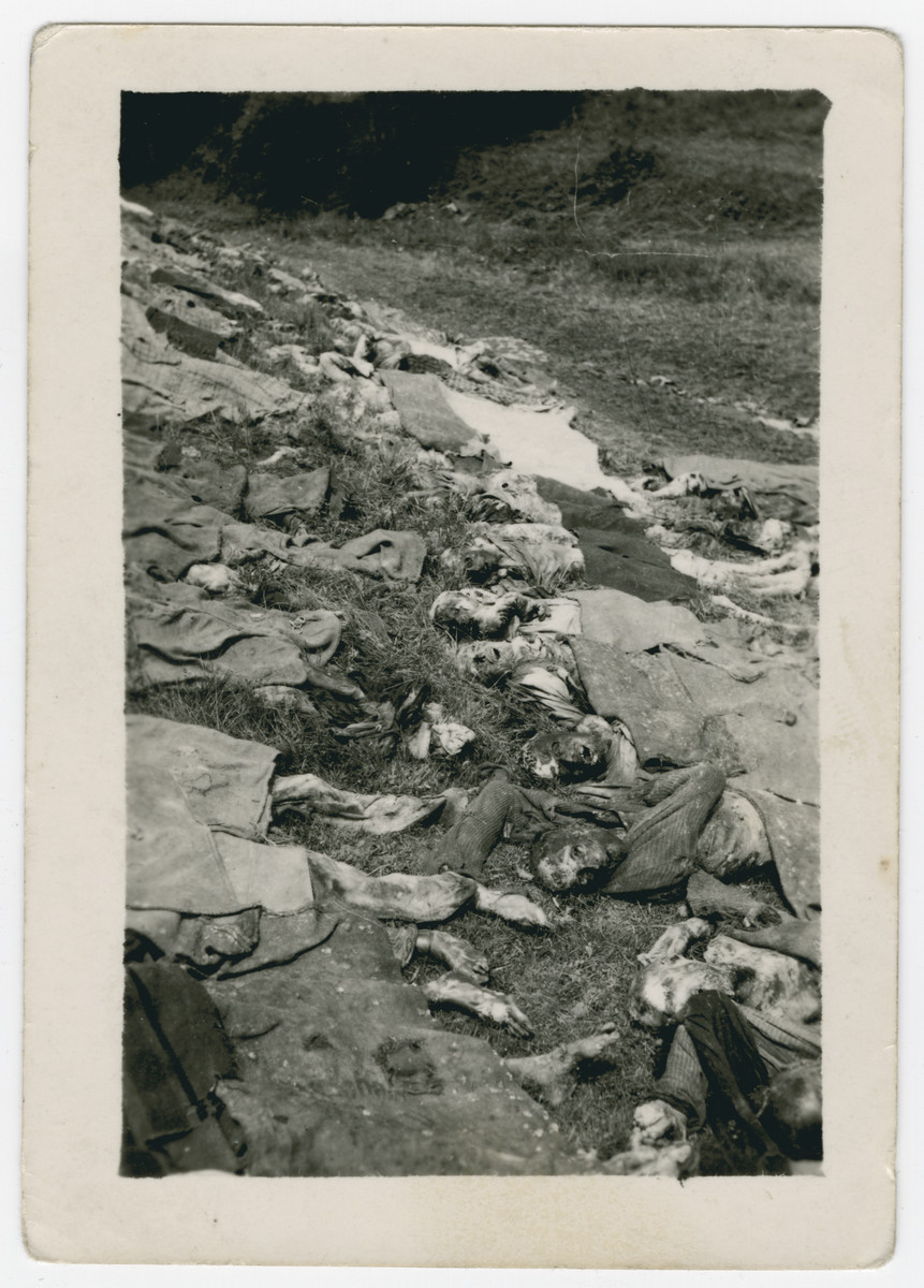 Corpses await reburial in Nammering after their discovery by the American army.