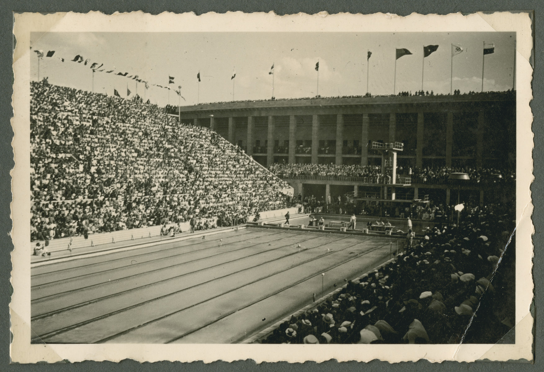 Spectators fill the bleachers of the swimming stadium as they await the start of a competition.