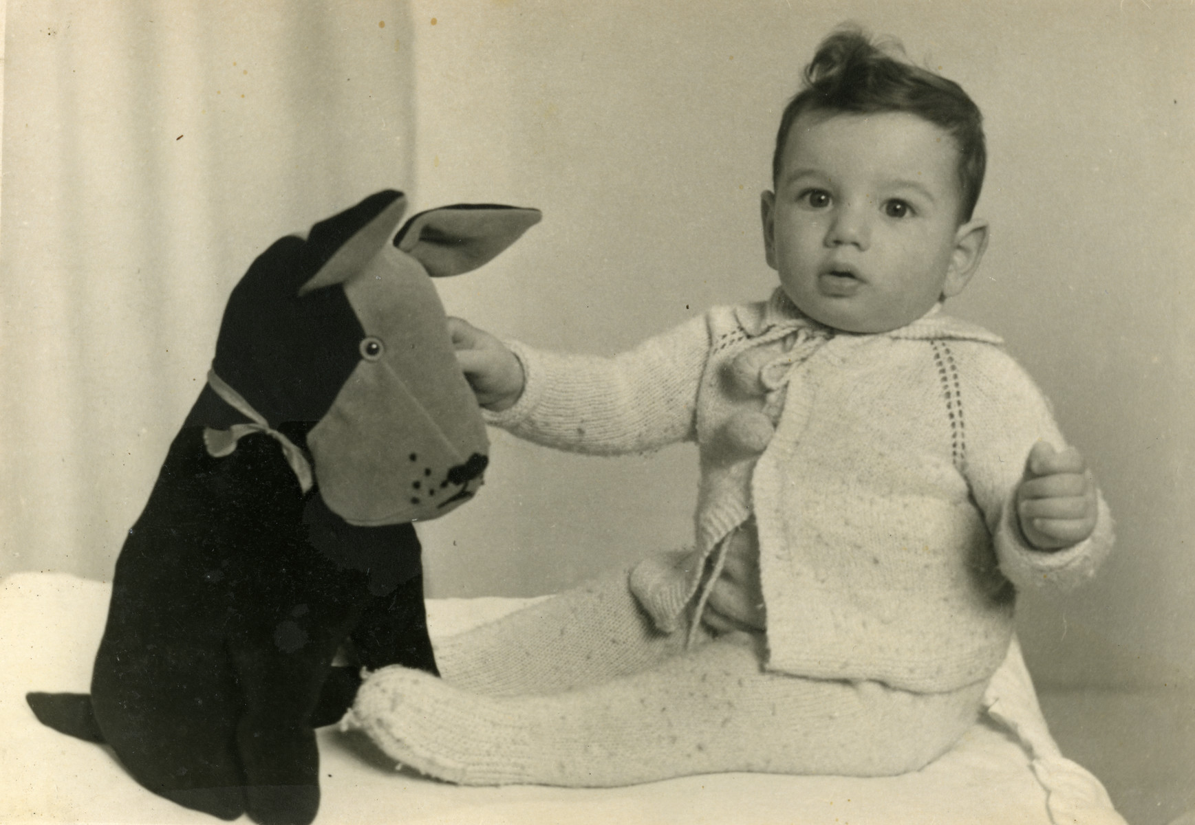 Portrait of Simon Herman van den Bergh, the cousin of the donor, with a large stuffed dog.  Simon van den Bergh was born in Amsterdam on December 14, 1941 to Jacques and Sara van den Bergh-Kater.  He was killed in Sobibor at the age of one and a half on July 2, 1943.
