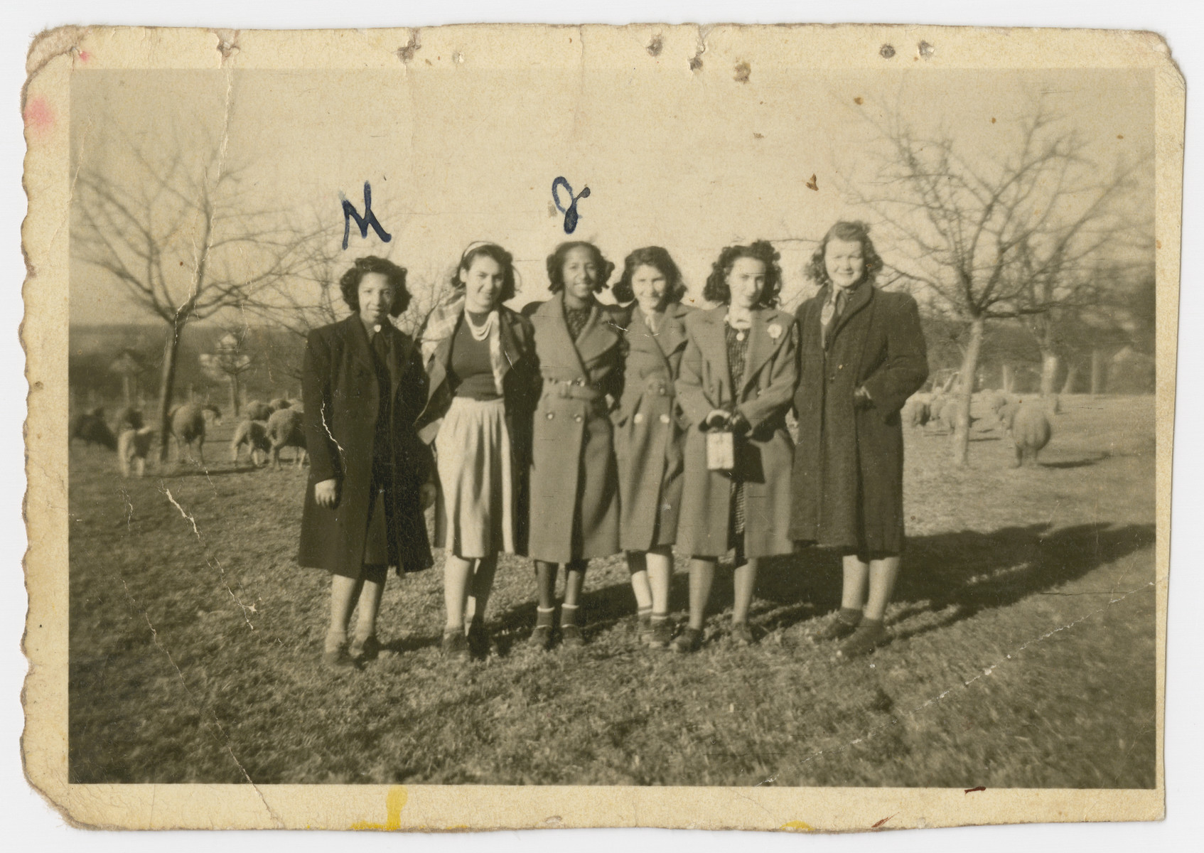 Group portrait of teenagers in the Liebenau internment camp.  Marilyn Johnson is pictured on the far left and Jaqueline Johnson is pictured third from the left.