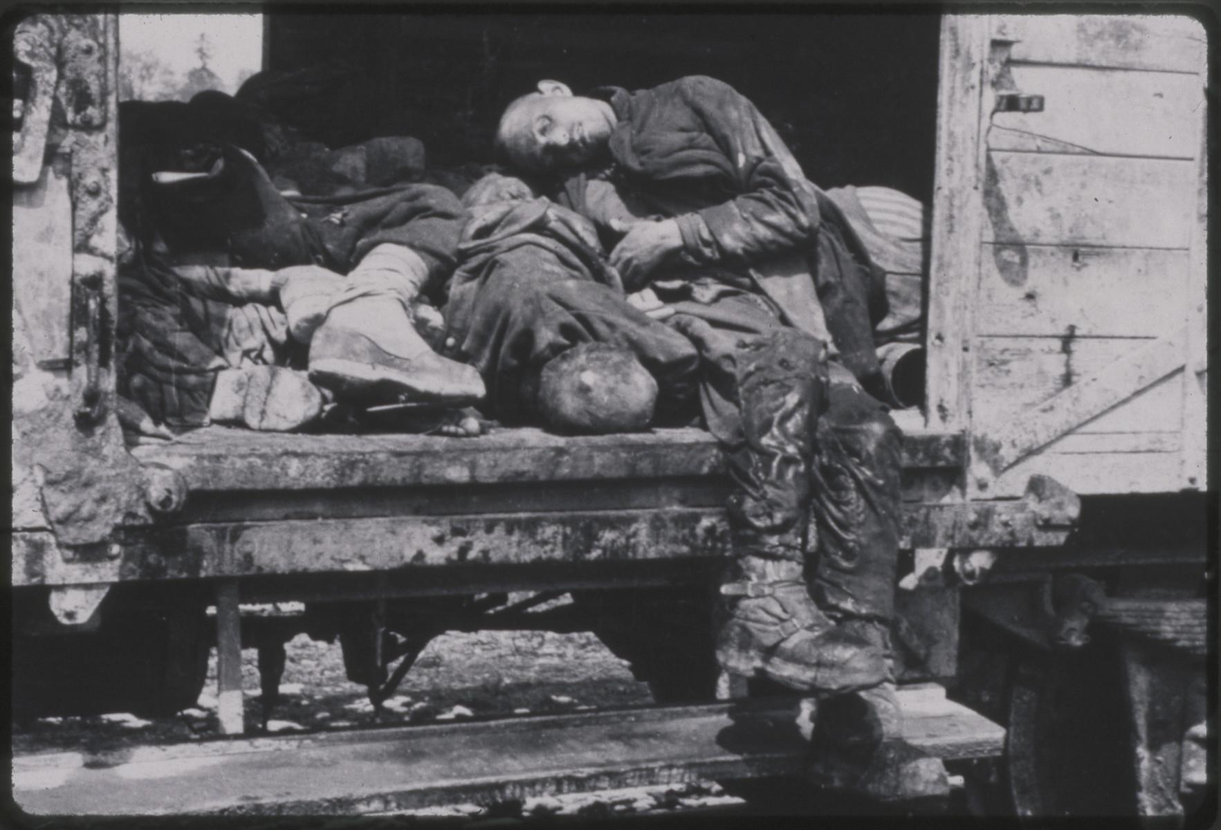 Close-up view of bodies on the Dachau death train.