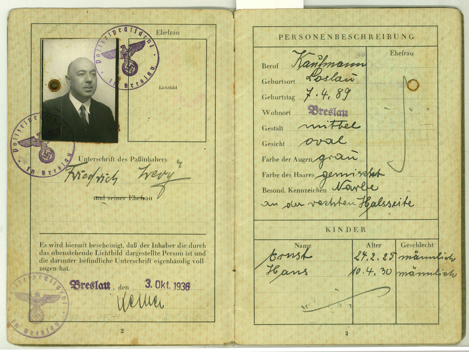 Identification papers issued to Friedrich Levy.