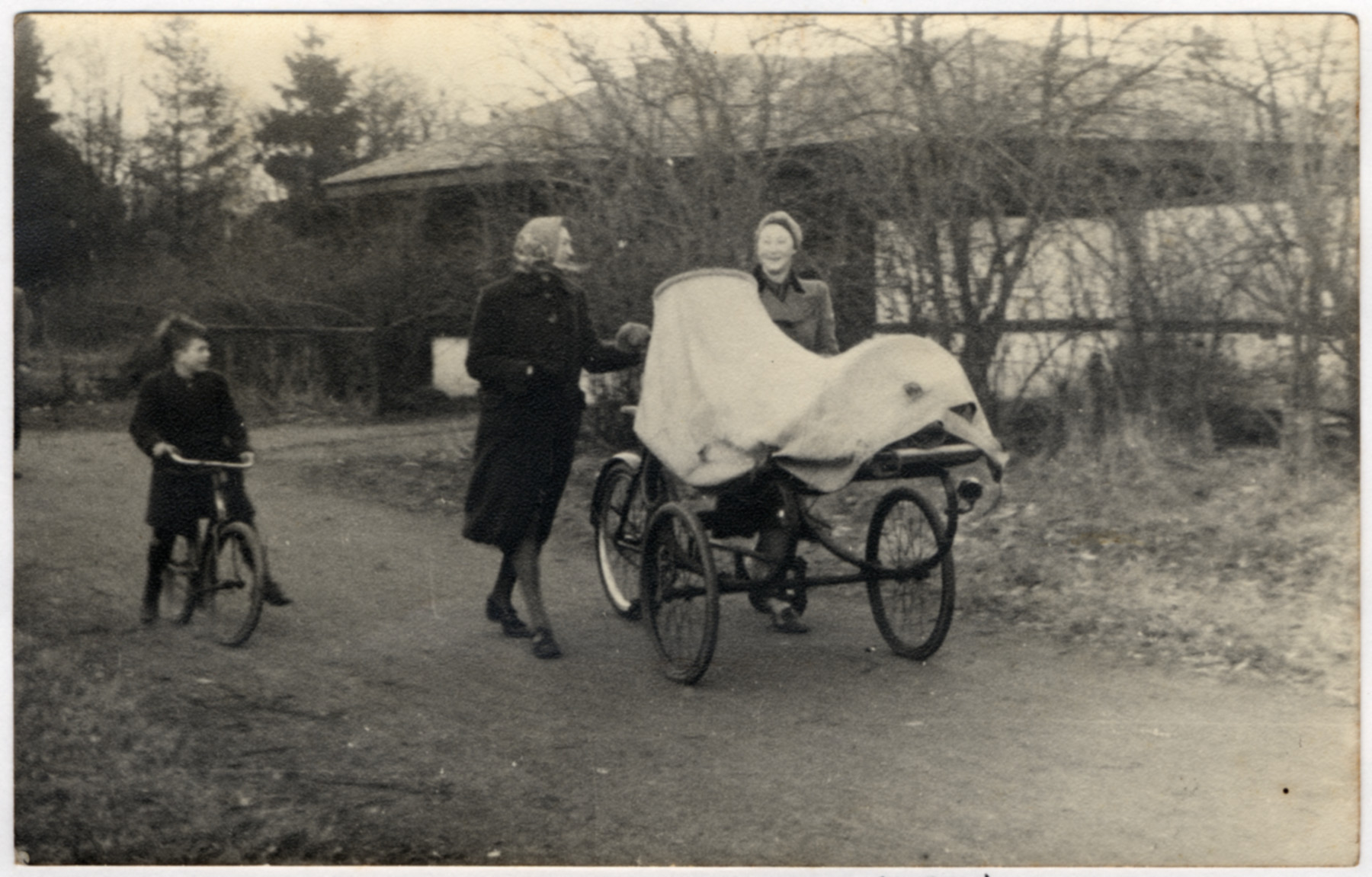 Edith van Dam transports her nephew Jaap van Dam in a covered cart to a hospital to have an appendicitis during the final weeks of the war.