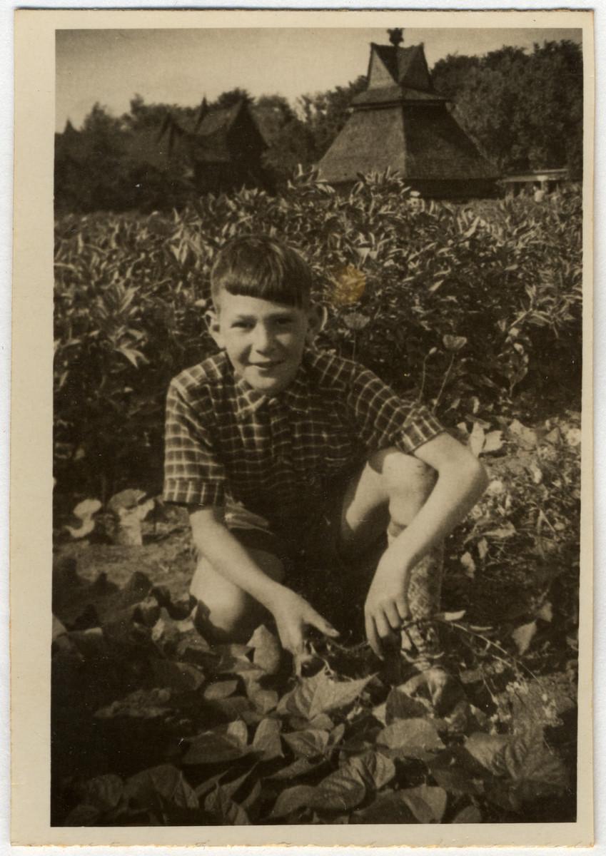 Jaap Vromen works in his school garden.