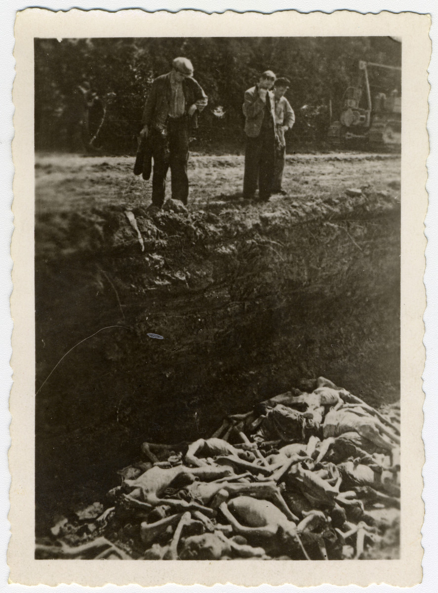 Three men peer into a large mass grave filled with the naked corpses [probably of victims from Dachau].