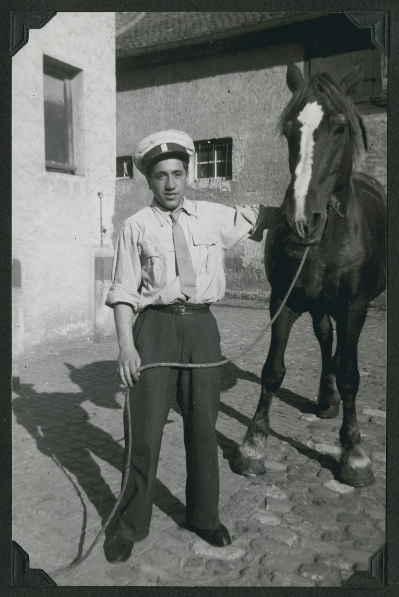 Close-up portrait of a man holding a horse in the Hafetz Hayyim religious kibbutz in the Zeilsheim displaced persons camp.